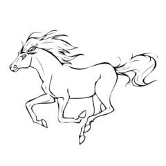 Pferd Silhouette Vektor