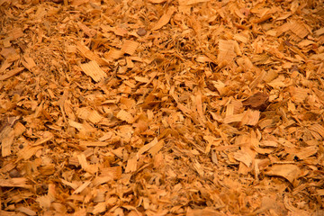 Wooden shavings background