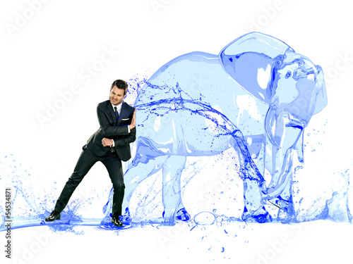 water's elephant