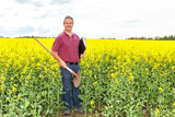 Farmer in inspection of his rapeseed field