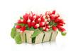 Barquette de radis roses