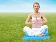 Yoga. Beautiful Woman doing Yoga Exercises in the Park. Yoga Gir