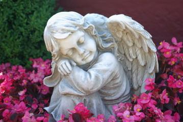 Engel im Blütenmeer