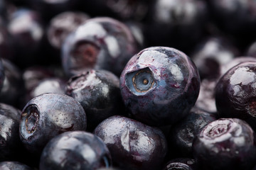 bilberry macro closeup