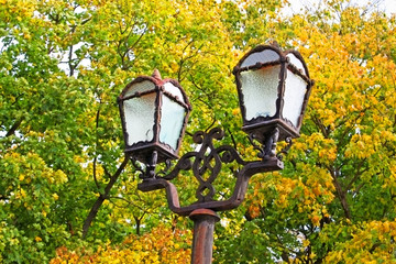 Street lamp on yellow leaves autumn background
