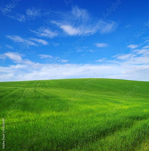 Fototapeten,ackerbau,hintergrund,schön,blau