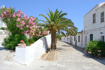 Asinara - Paese abbandonato di Cala d'Oliva