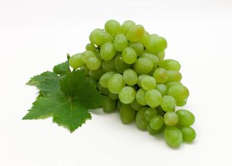 Weintrauben und Weinlese