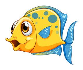 A small yellow fish