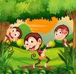 Three monkeys dancing in the forest
