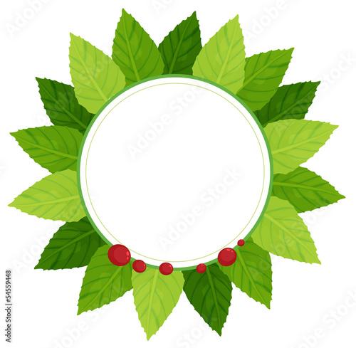 A leaf plate