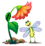 A smiling dragonfly below the giant flower