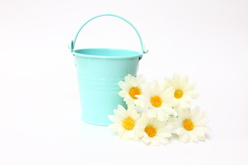 Blue bucket with white flowers on white background