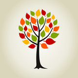 Fototapety Tree wood2