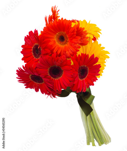gerbera flowers bouquet