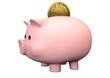 Pigg Bank Time Is Money Saving