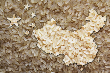 rice texture flag style china
