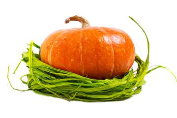 Fresh orange pumpkin with green raffia isolated on white