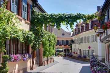 village viticole allemand
