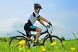 草原のサイクリスト