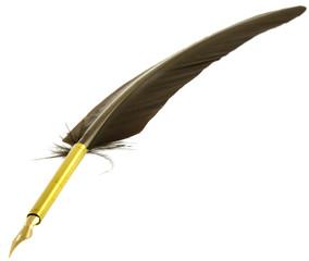 plume de calligraphie médiévale
