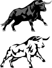 attacking black bull