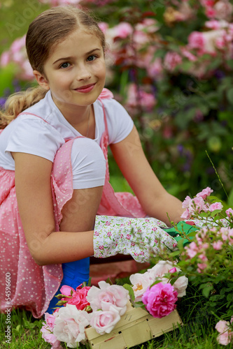 Rose garden - cute girl cutting roses in the garden