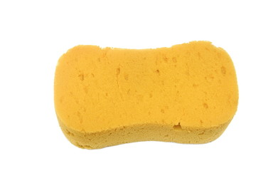 Old Sponge isolated
