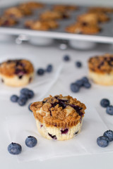 blueberry muffins with tray