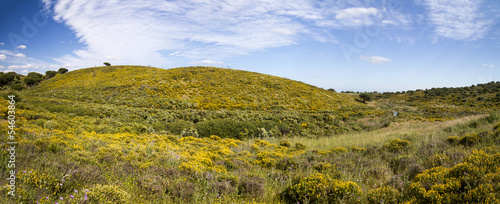 Beautiful spring view of Algarve countryside hills