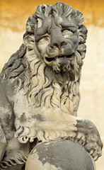 lion sculpture from Boboli Gardens, Florence