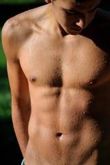 Muscolatura maschile. Ragazzo a torso nudo