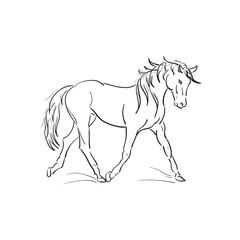 running horse vector outline