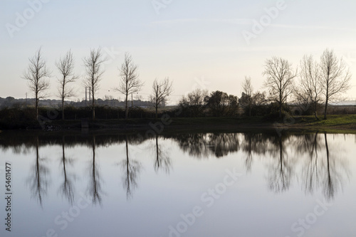tranquil lake with bare leafless trees