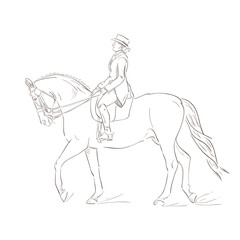 Dressage horse, vector sketch