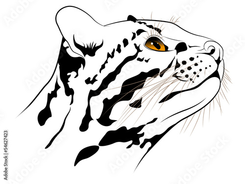 The abstract image of a ocelot executed in the form of a tattoo