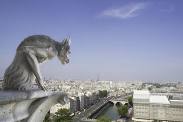 gargoyle - Notre Dame - Paris France