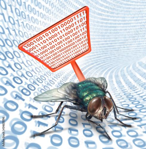 Computer Bug Security