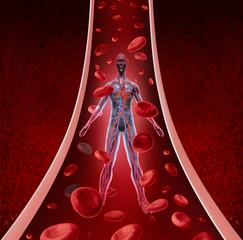 Human Circulation Health