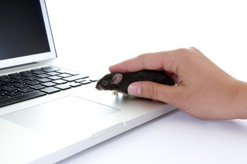 Real PC Mouse