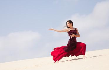 flamenco in the dunes