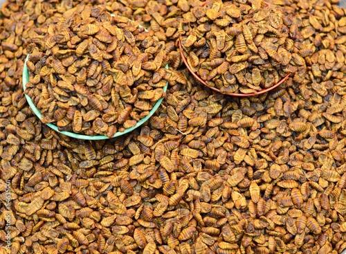 Beondegi Silkworm Snack