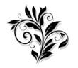 Elegance floral element