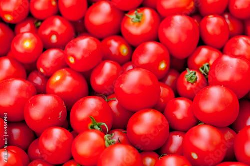 frische gesunde rote tomaten auf dem markt im sommer