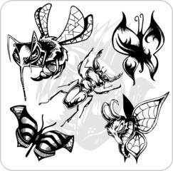 Vinyl-ready vector set. Predatory insects