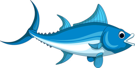 Illustration of an Atlantic bluefin tuna for you design