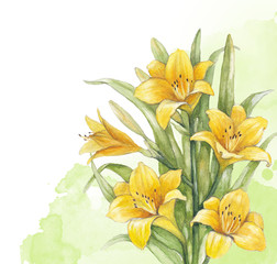 Watercolor lily flower. Perfect for invitation of greeting card