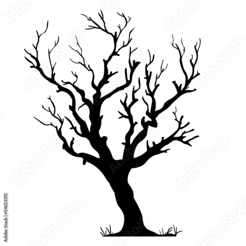 vector black silhouette of a bare tree - 54653015