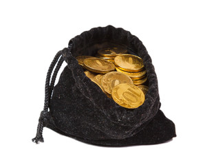 Money coins in bag isolated