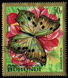 BURUNDI - CIRCA 1971 A stamp  shows a butterfly